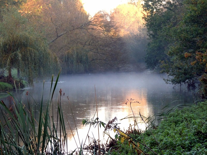 Sites-river-loddon-rm