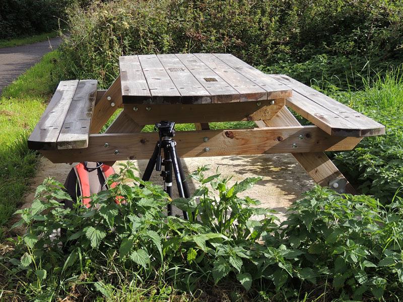News-memorial-bench